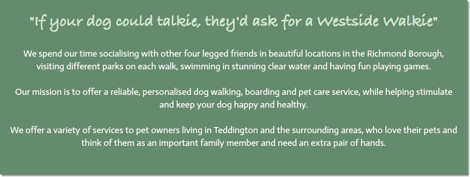"""If your dog could talkie, they'd ask for a Westside Walkie"" We spend our time socialising with other four legged friends in beautiful locations in the Richmond Borough, visiting different parks on each walk, swimming in stunning clear water and having fun playing games. Our mission is to offer a reliable, personalised dog walking, boarding and pet care service, while helping stimulate and keep your dog happy and healthy. We offer a variety of services to pet owners living in Teddington and the surrounding areas, who love their pets and think of them as an important family member and need an extra pair of hands."